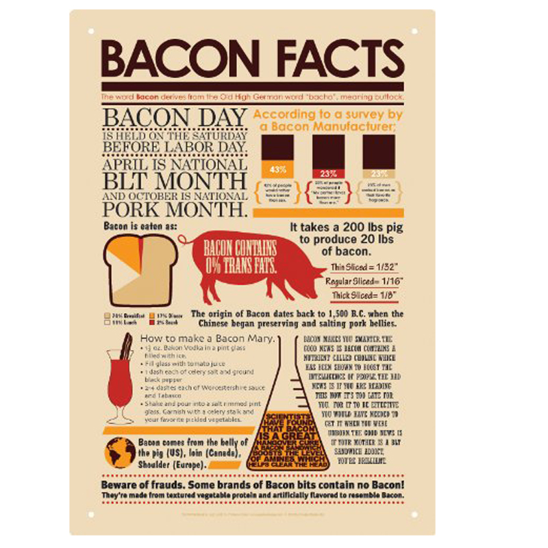 Gag Gifts - Bacon Facts Tin Sign