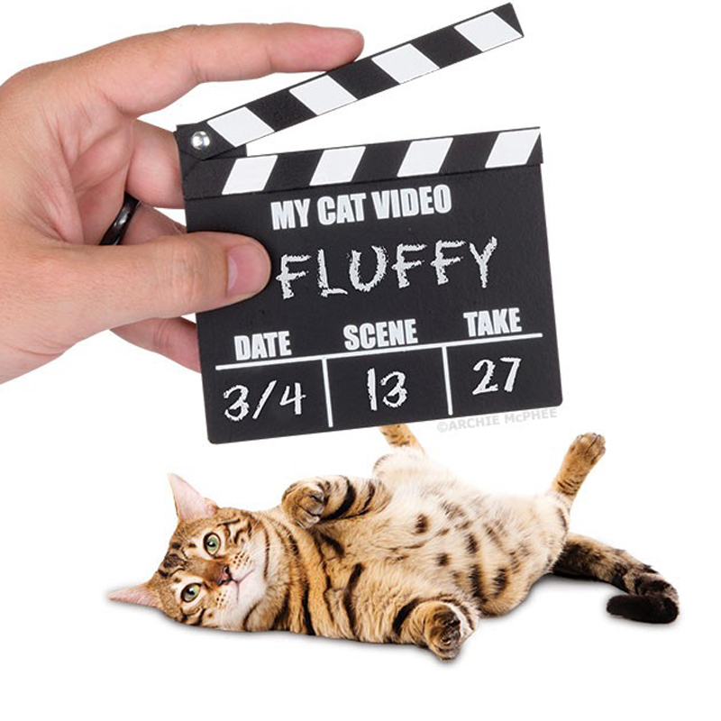 Gag Gifts - CAT VIDEO CLAPPER BOARD