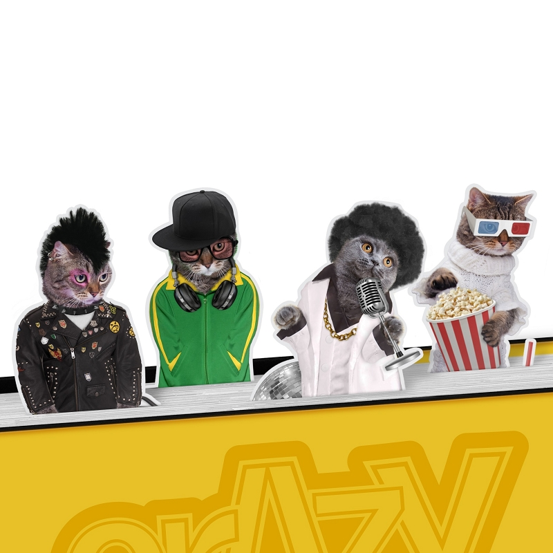 Gag Gifts - Crazy Cats Bookmarks
