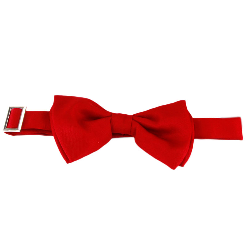 Gag Gifts - Doctor Who 11th Doctor's Bowtie