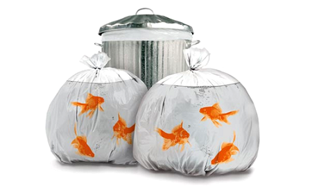 Gag Gifts - Goldfish Garbage Bag