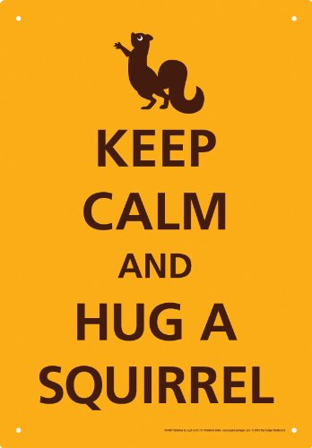 Gag Gifts - Keep Calm Squirrel Tin Sign