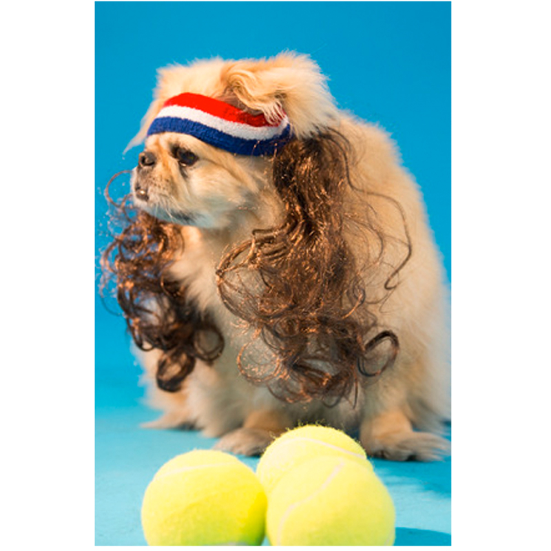 Gag Gifts - Mullet On The Go: Dog Mullet, All American