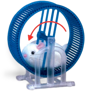 Gag Gifts - Wheel Running Hamster